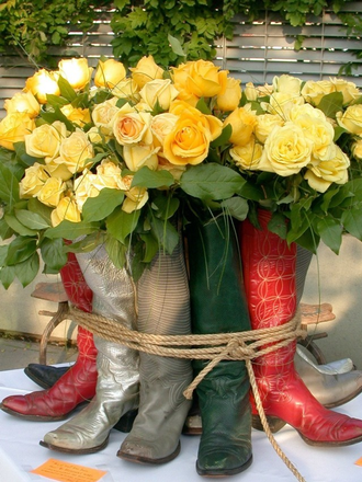 Yellow Roses of Texas